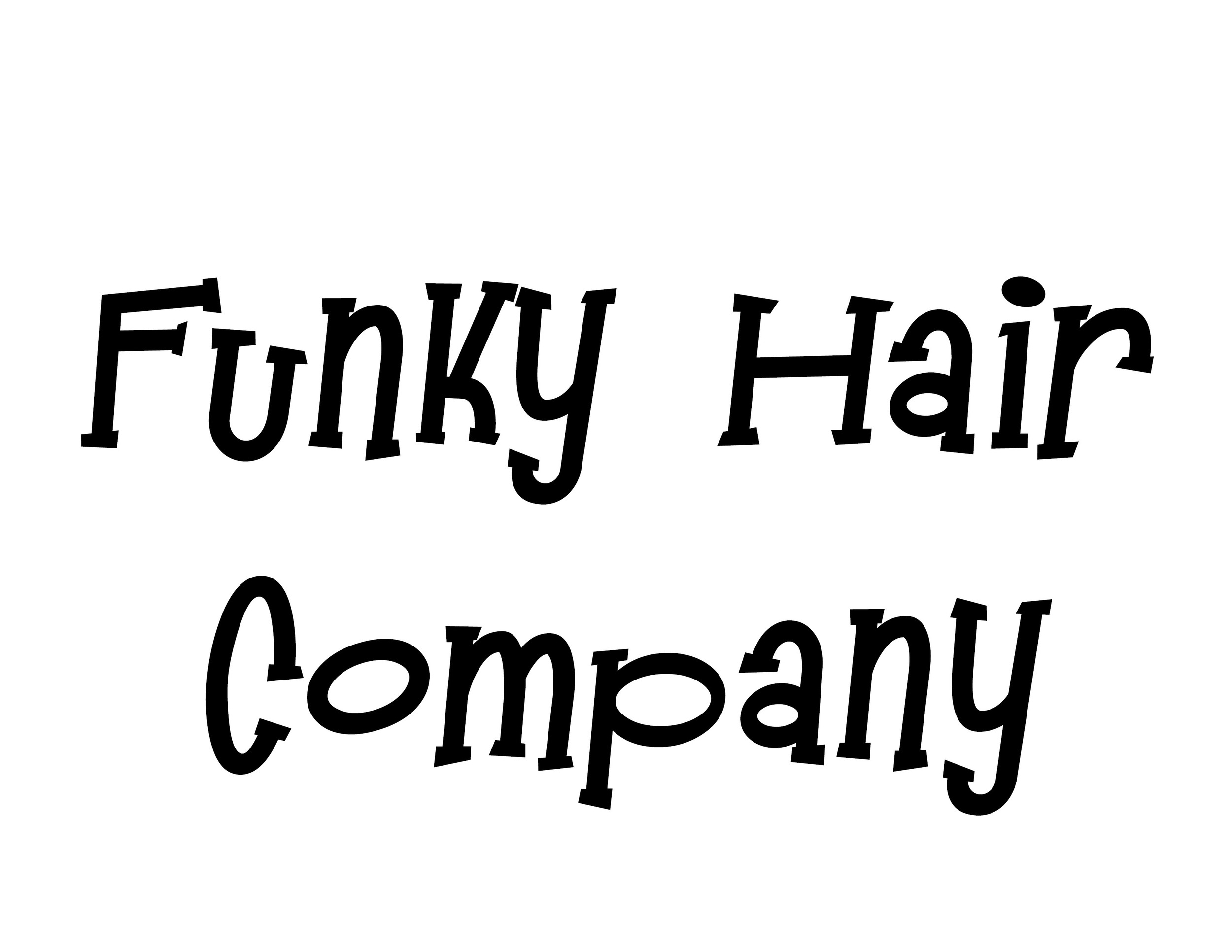funky hair co.jpg