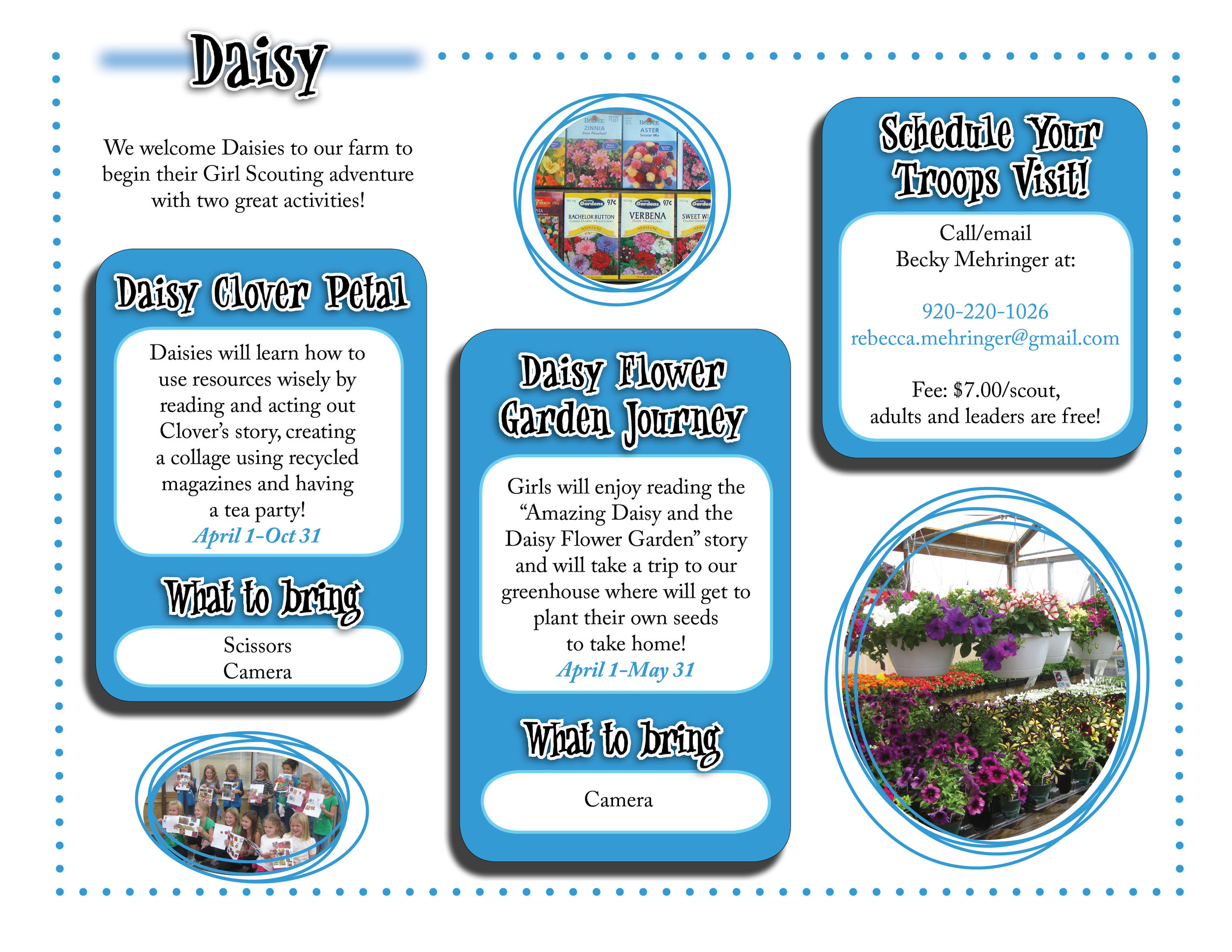 Daisy website graphic!.jpg