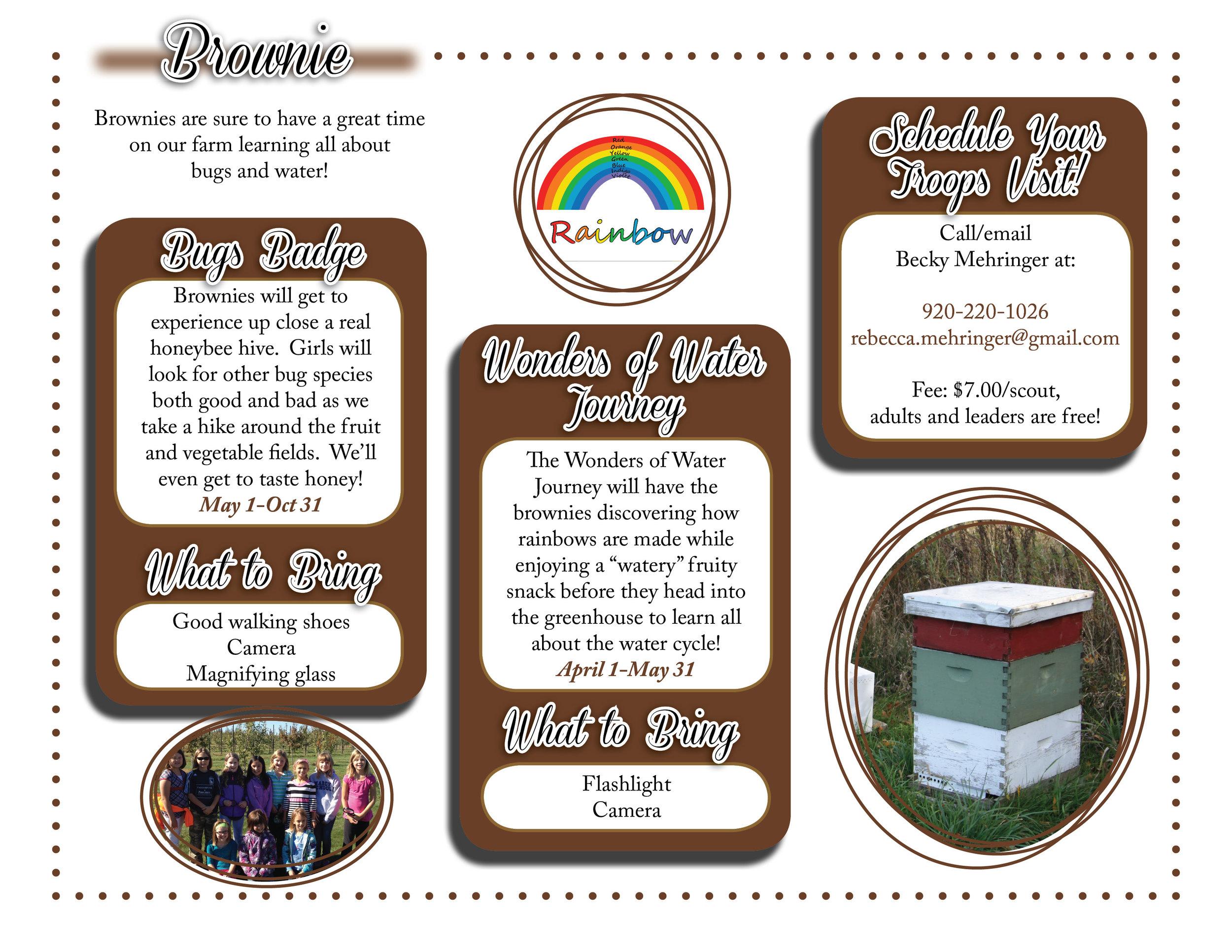 Brownie website graphic.jpg