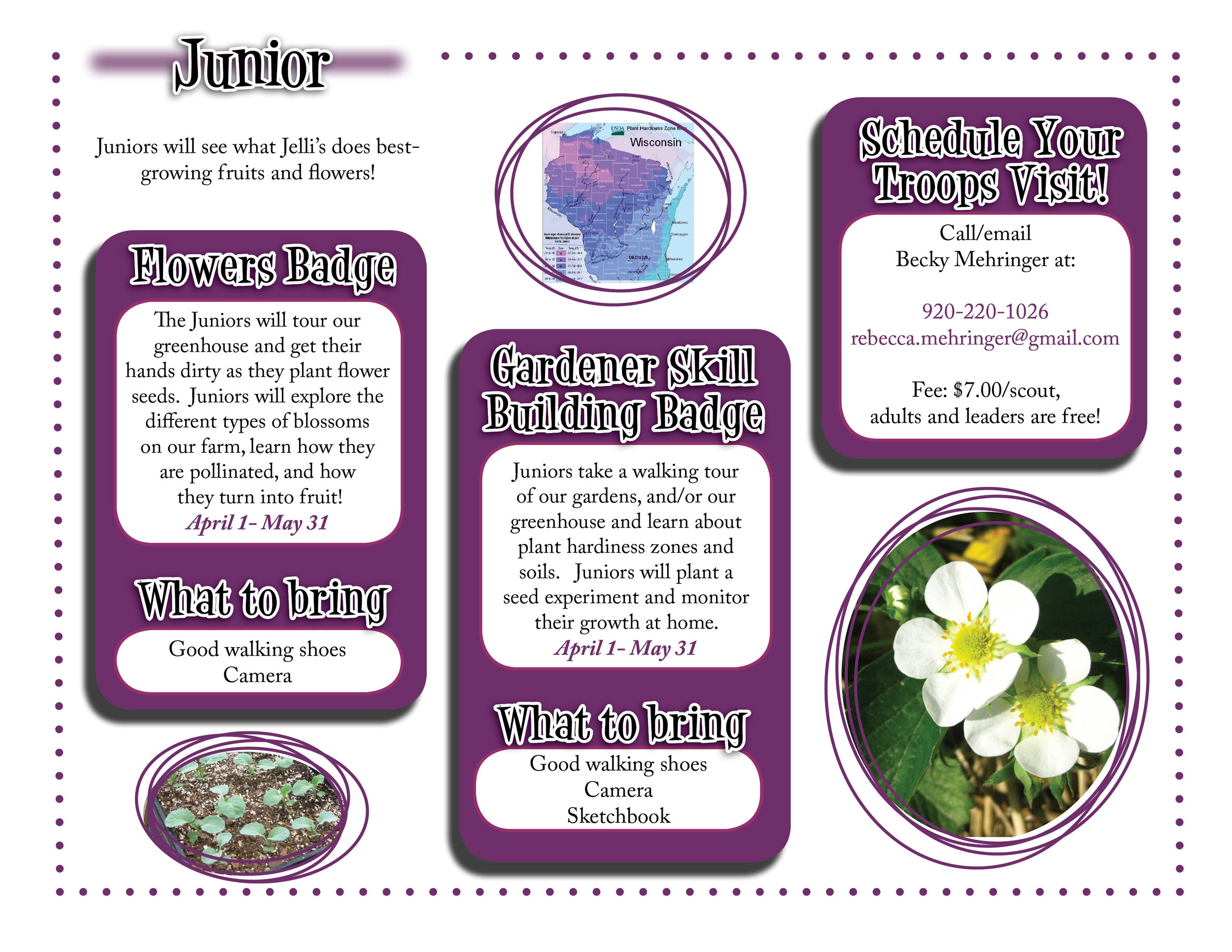 Junior website graphic.jpg