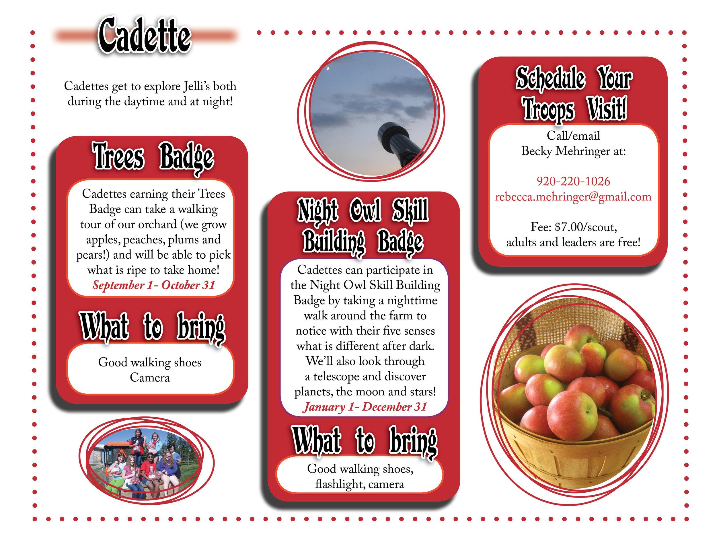 Cadette website graphic.jpg