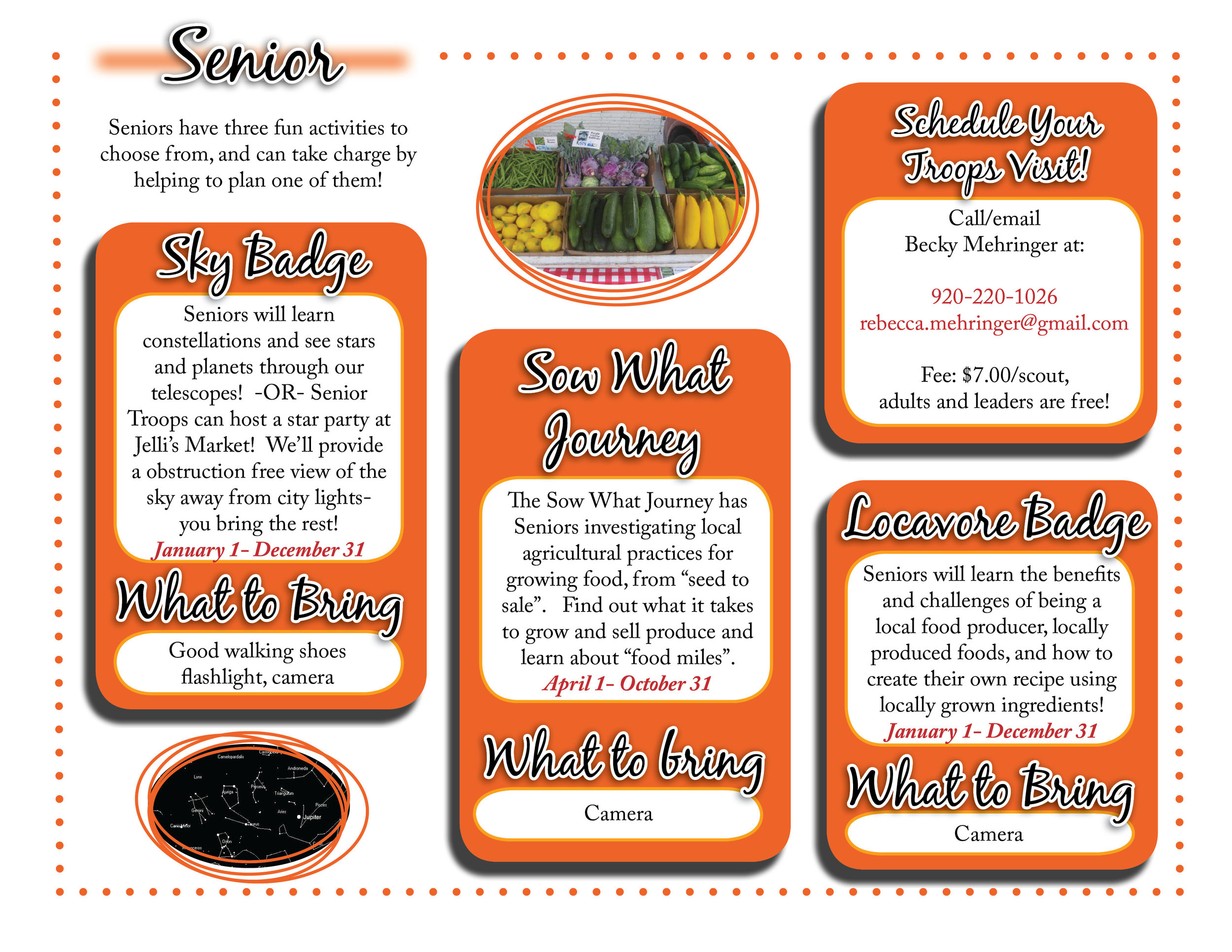 Senior website graphic.jpg