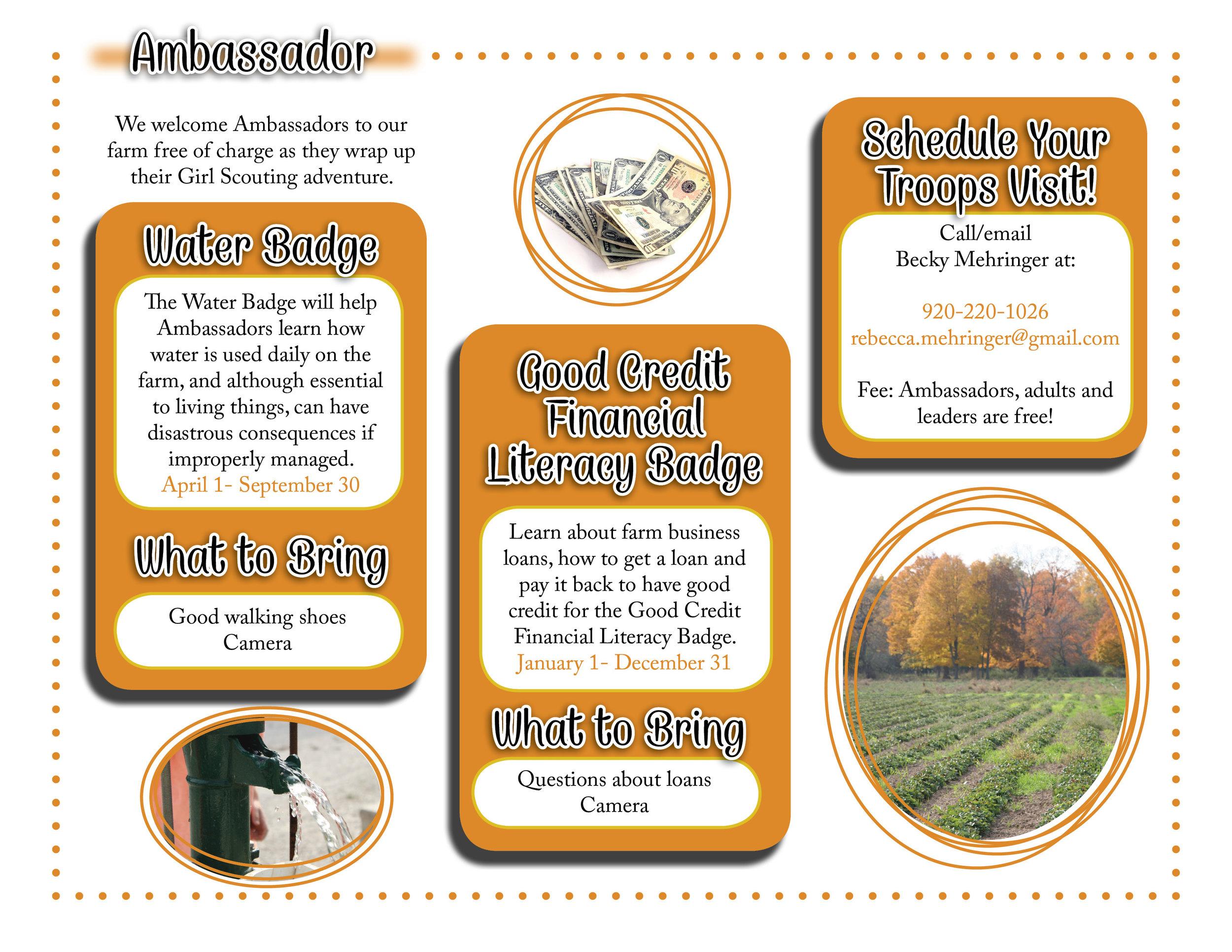 Ambassador website graphic.jpg