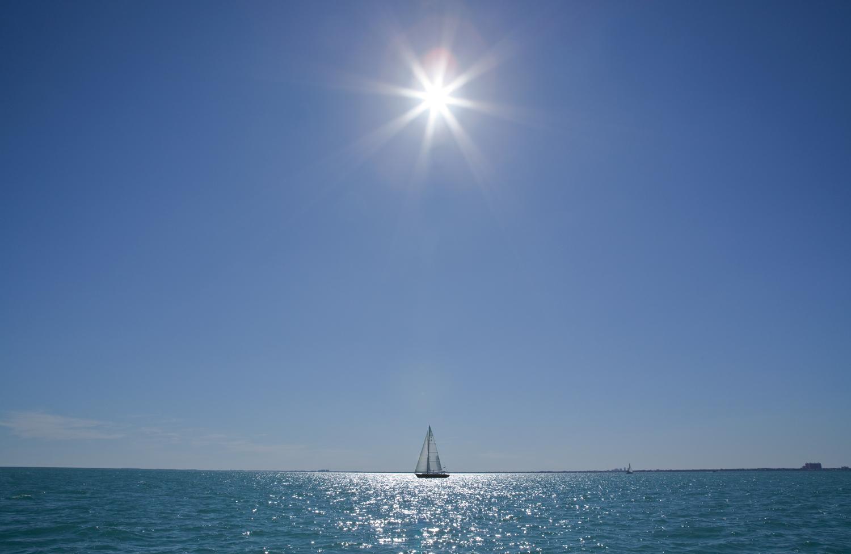 Sunny Sails, 2011