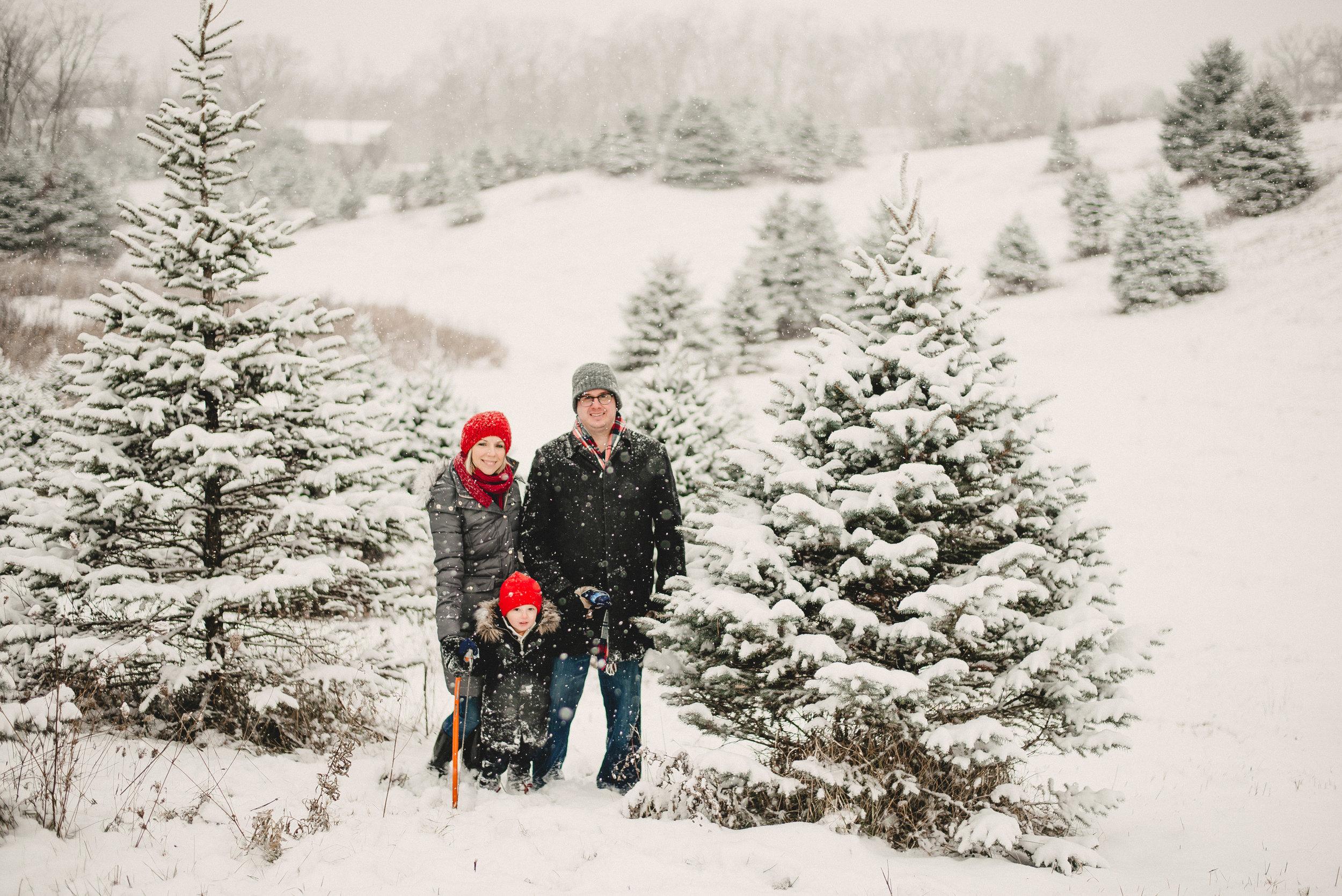 Christmas Tree Farm Family Photo Session Metamora Michigan Winter (9).JPG