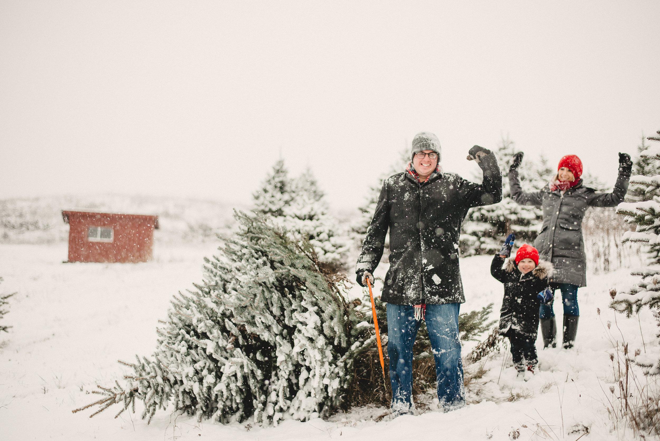 Christmas Tree Farm Family Photo Session Metamora Michigan Winter (13).JPG