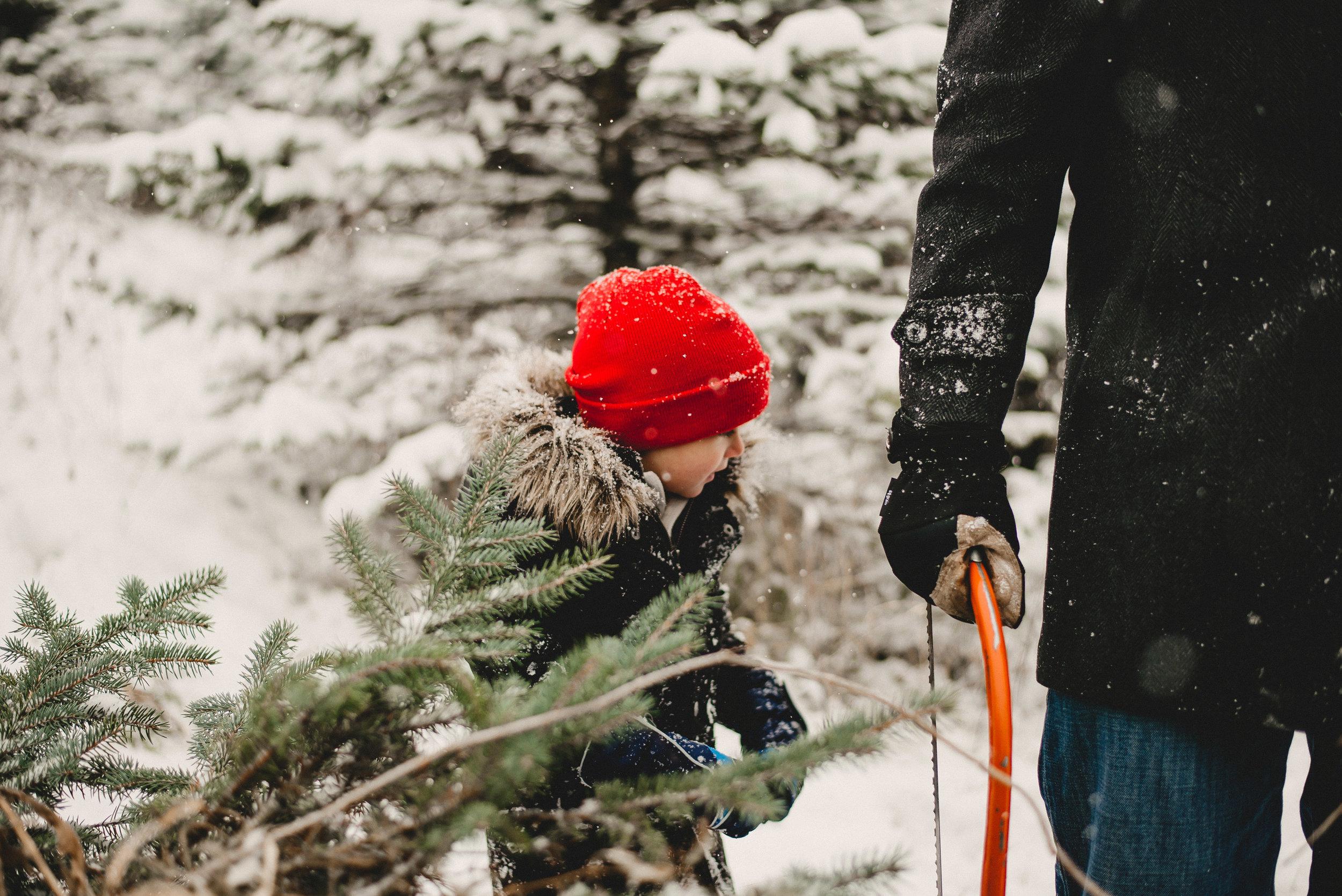 Christmas Tree Farm Family Photo Session Metamora Michigan Winter (20).JPG