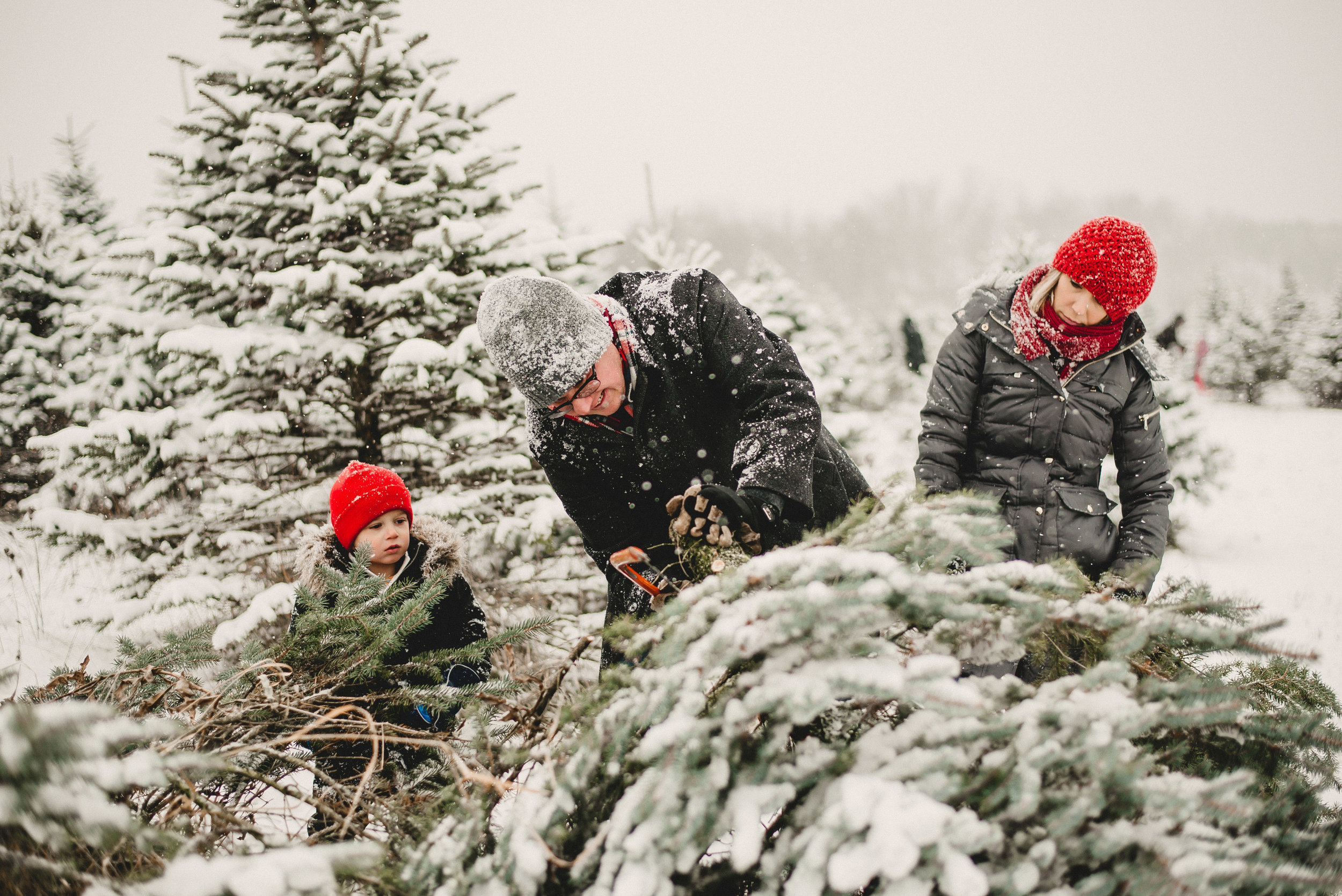Christmas Tree Farm Family Photo Session Metamora Michigan Winter (19).JPG