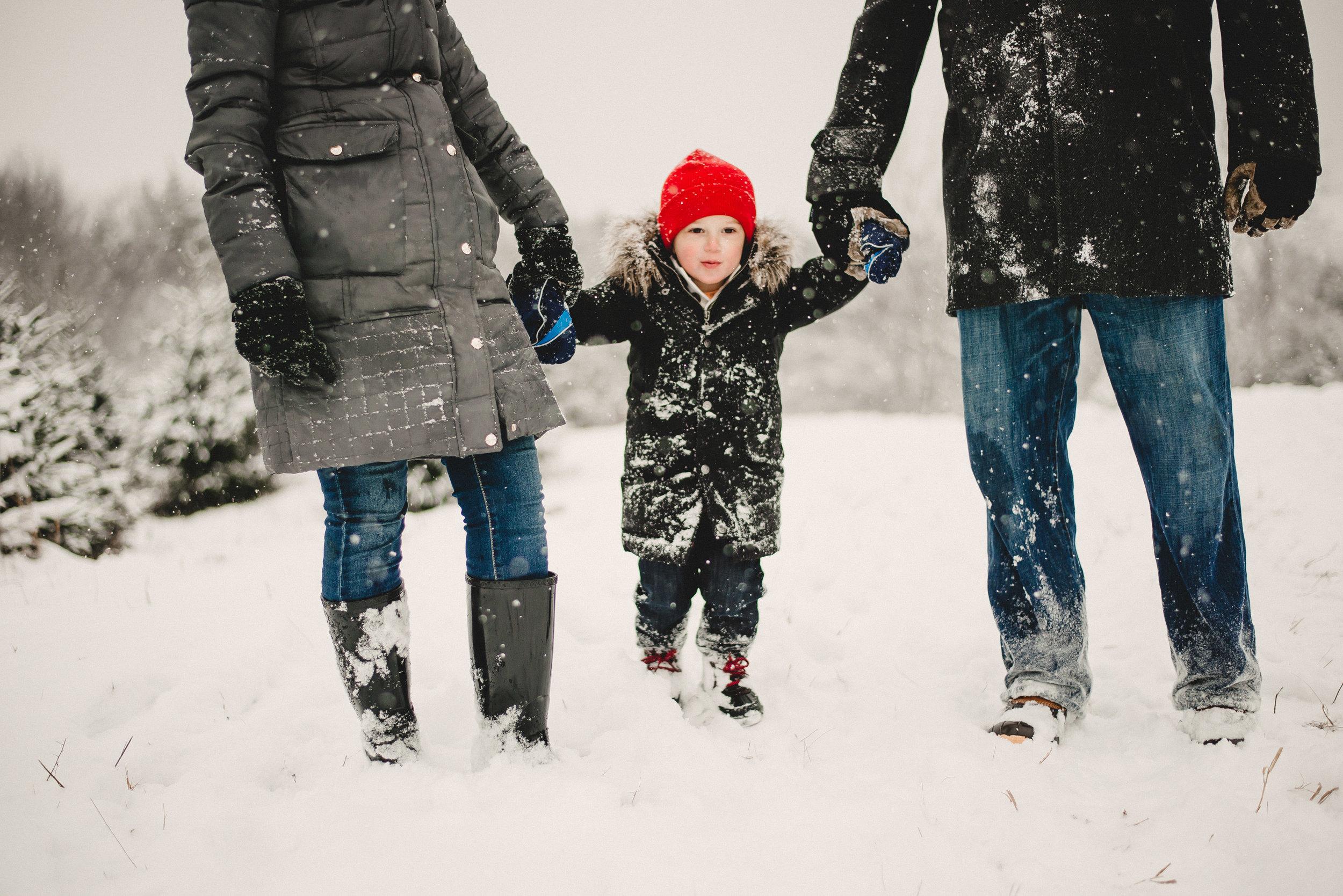 Christmas Tree Farm Family Photo Session Metamora Michigan Winter (34).JPG