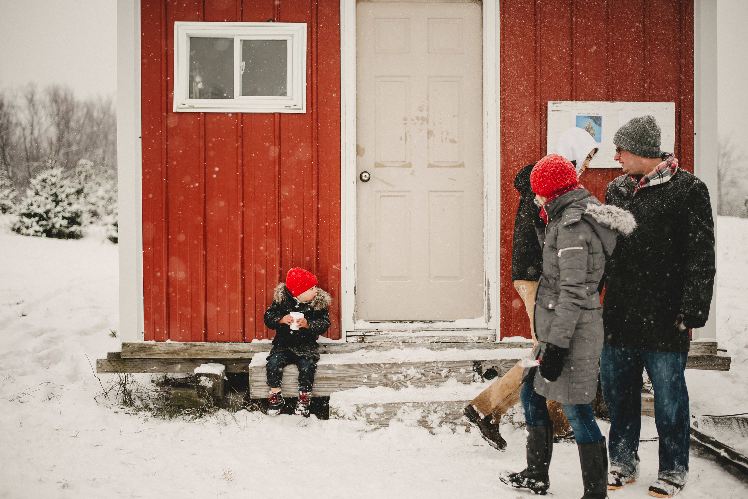 Christmas Tree Farm Family Photo Session Metamora Michigan Winter (41).JPG