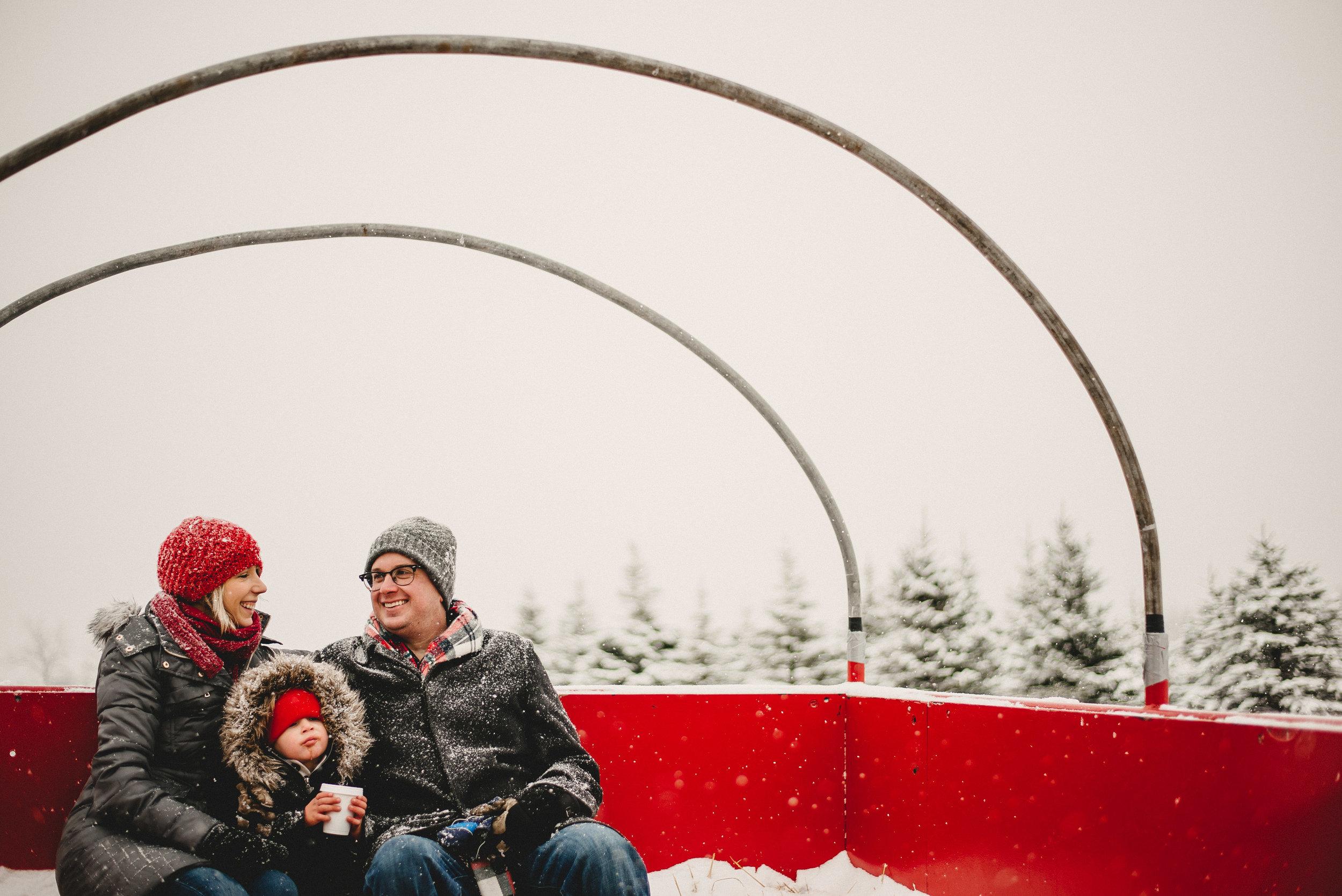 Christmas Tree Farm Family Photo Session Metamora Michigan Winter (44).JPG