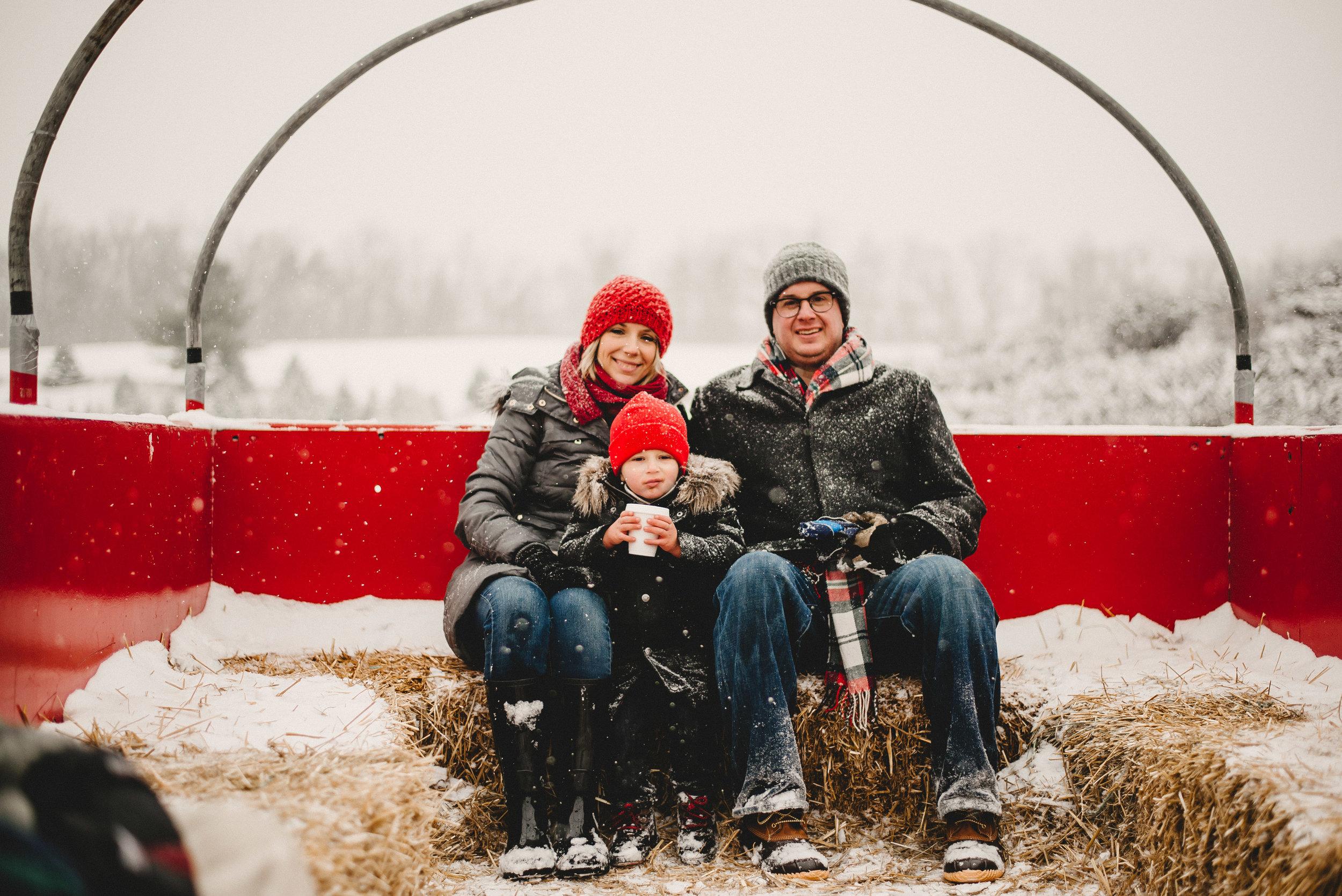 Christmas Tree Farm Family Photo Session Metamora Michigan Winter (47).JPG