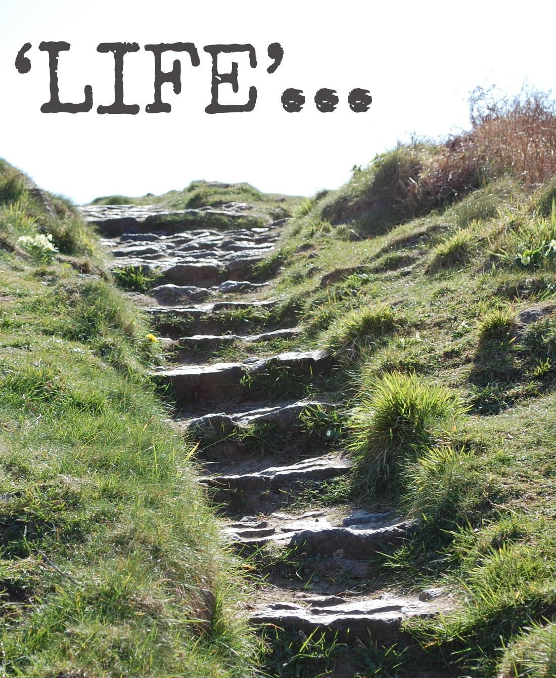 life steps.jpg