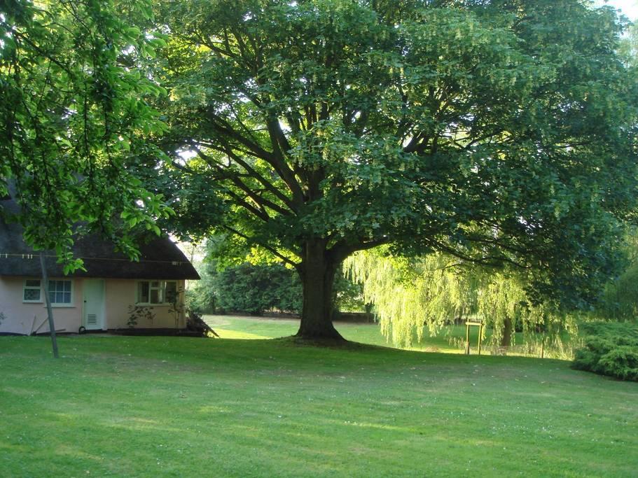 writing retreat cottage- wickhambrook D.jpg
