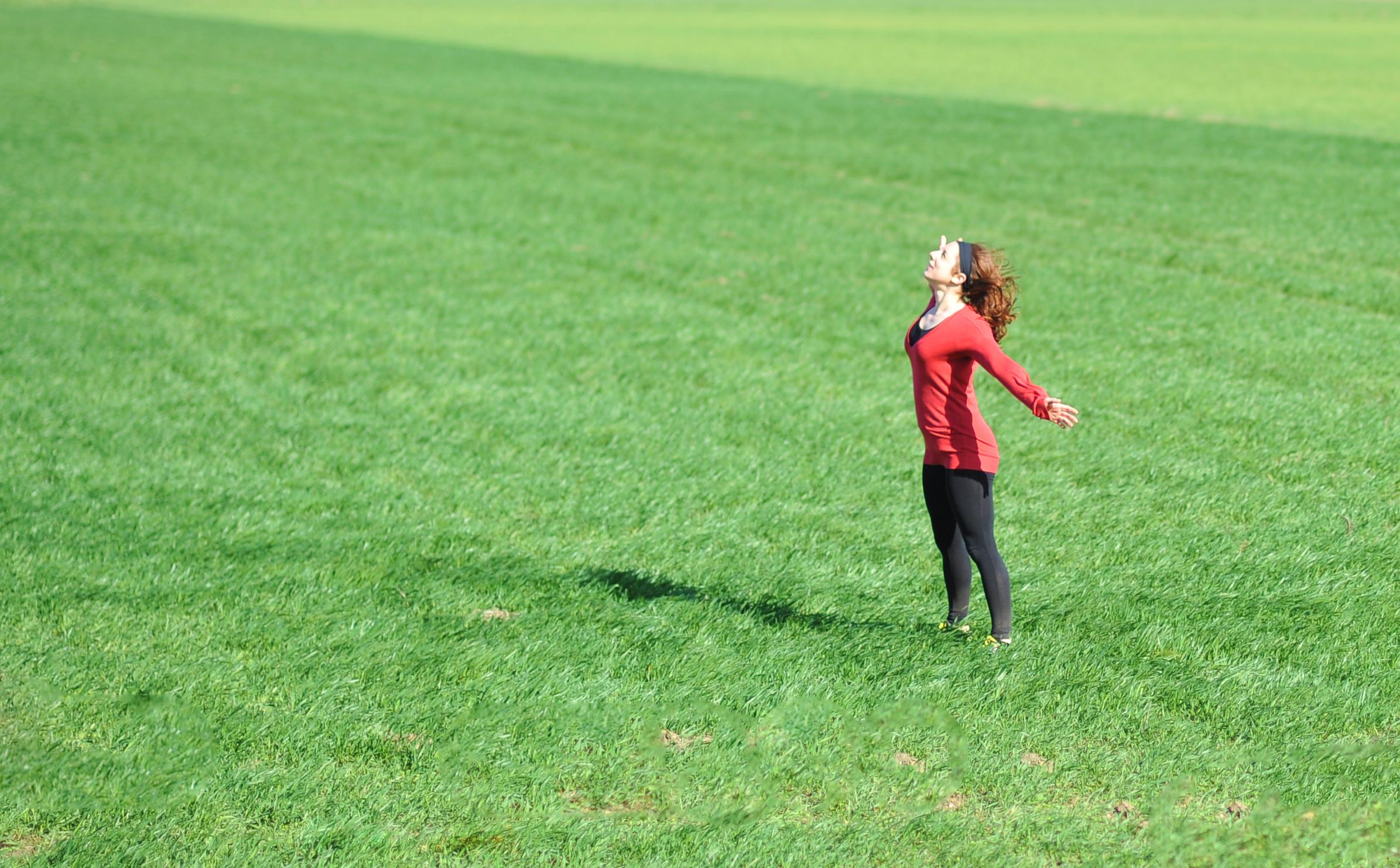 jo field crop.jpg