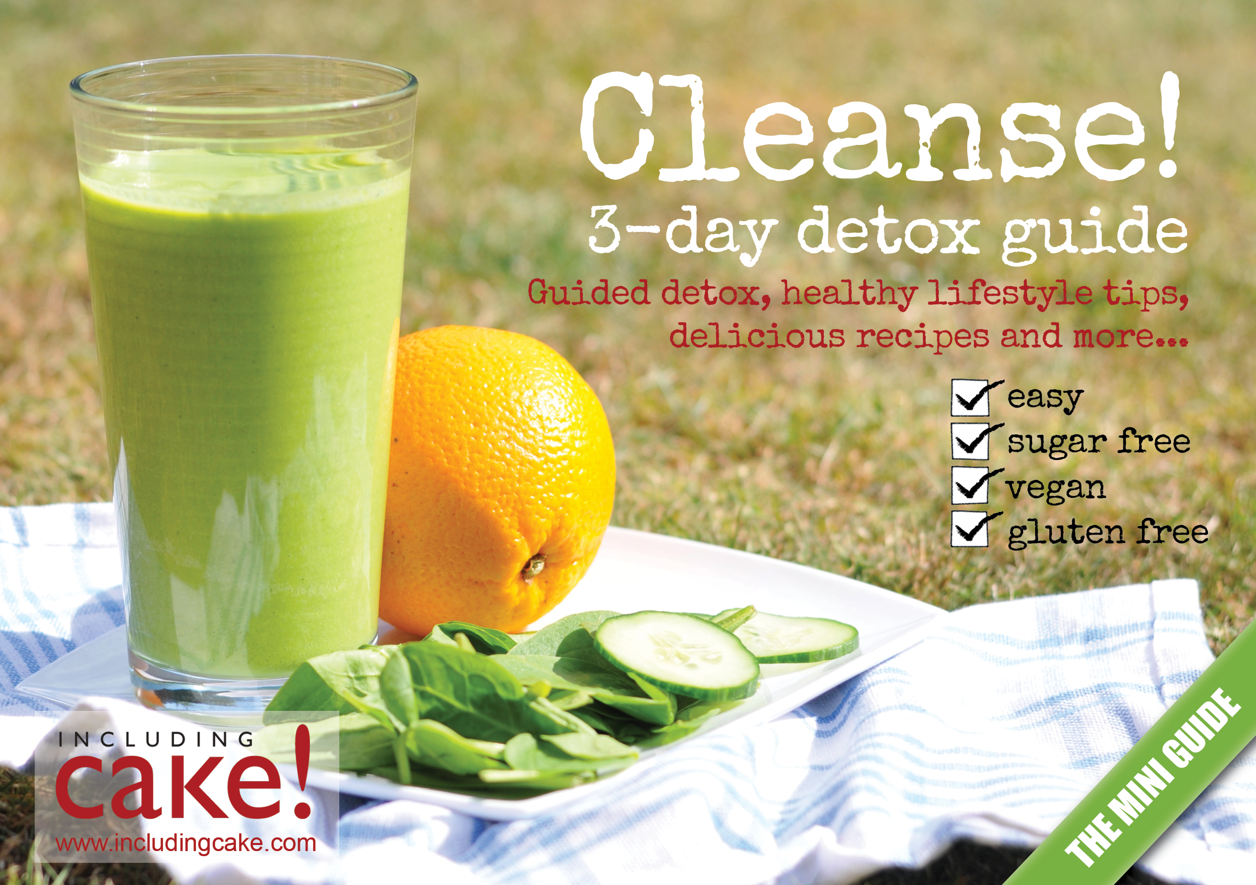 Cleanse 3-Day Detox - In the early days of my work as a health coach clients often asked for these kinds of recipes so I created a guide. (To be used as inspiration and a short term boost - these guidelines are not medically endorsed)