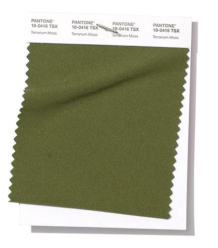 pantone terrarium moss
