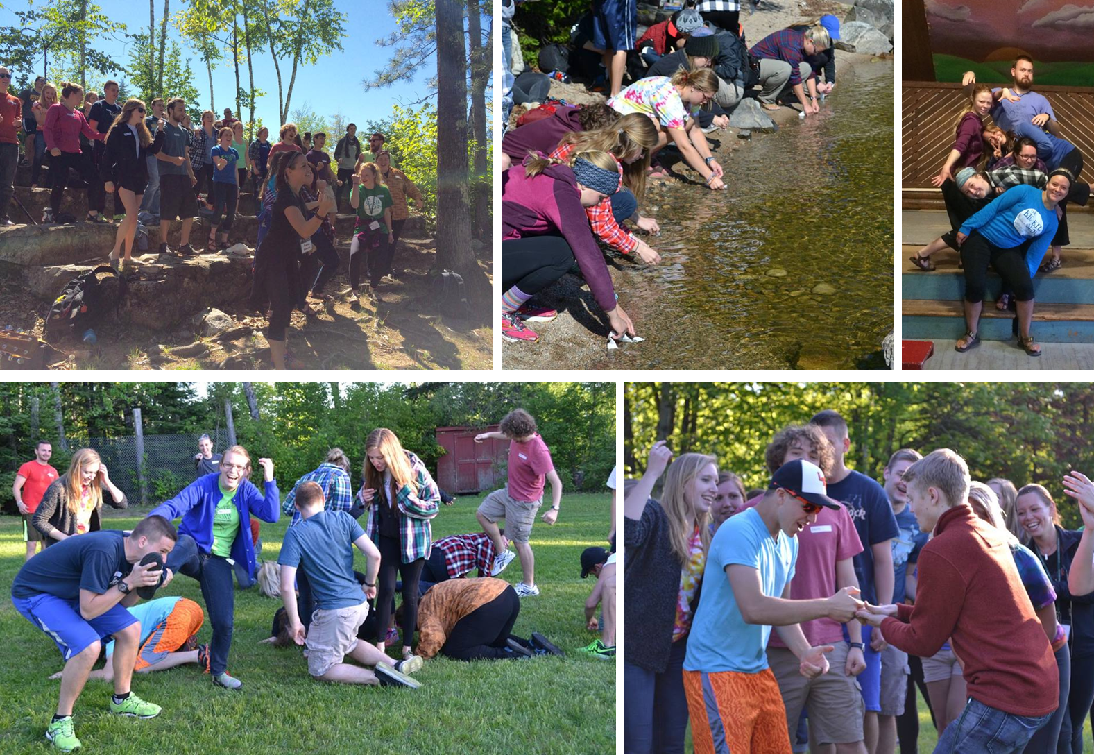 Click the collage above to view more photos from staff training!