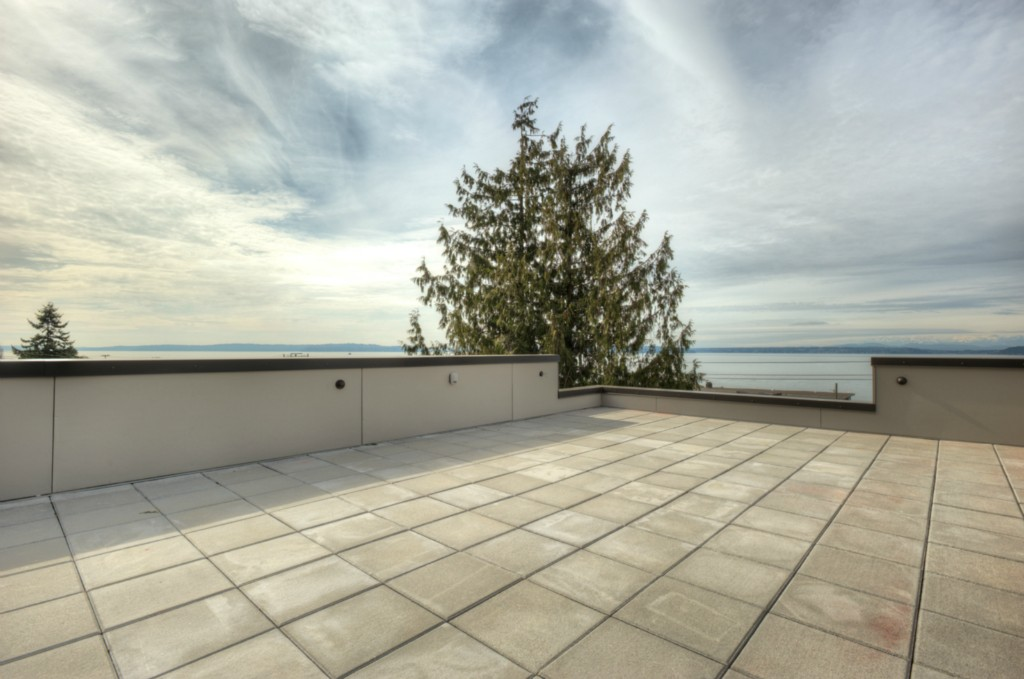10-West-Seattle-Home-for-Sale-rooftop.jpg