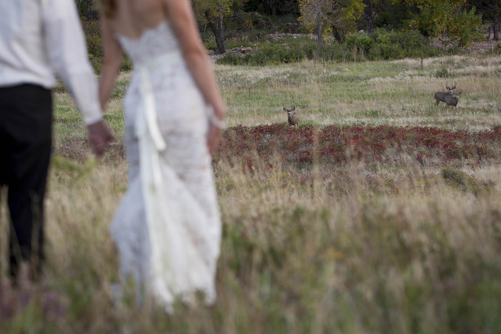 Kestrel_Jacob_Boulder_Wedding_14.jpg