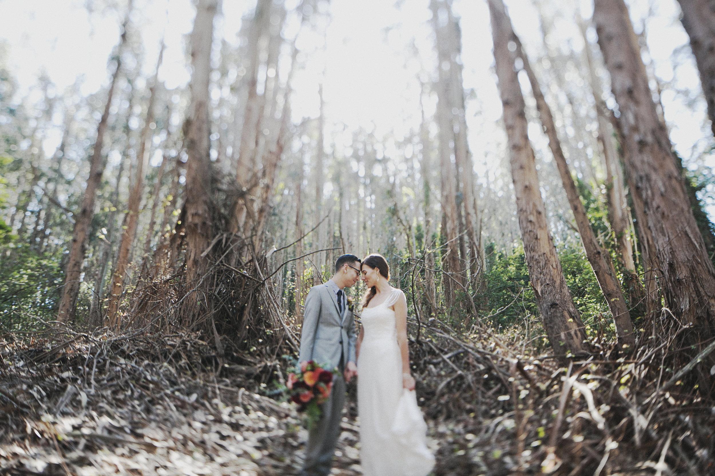 Nichole_Will_SanFranciso_Wedding_12.JPG