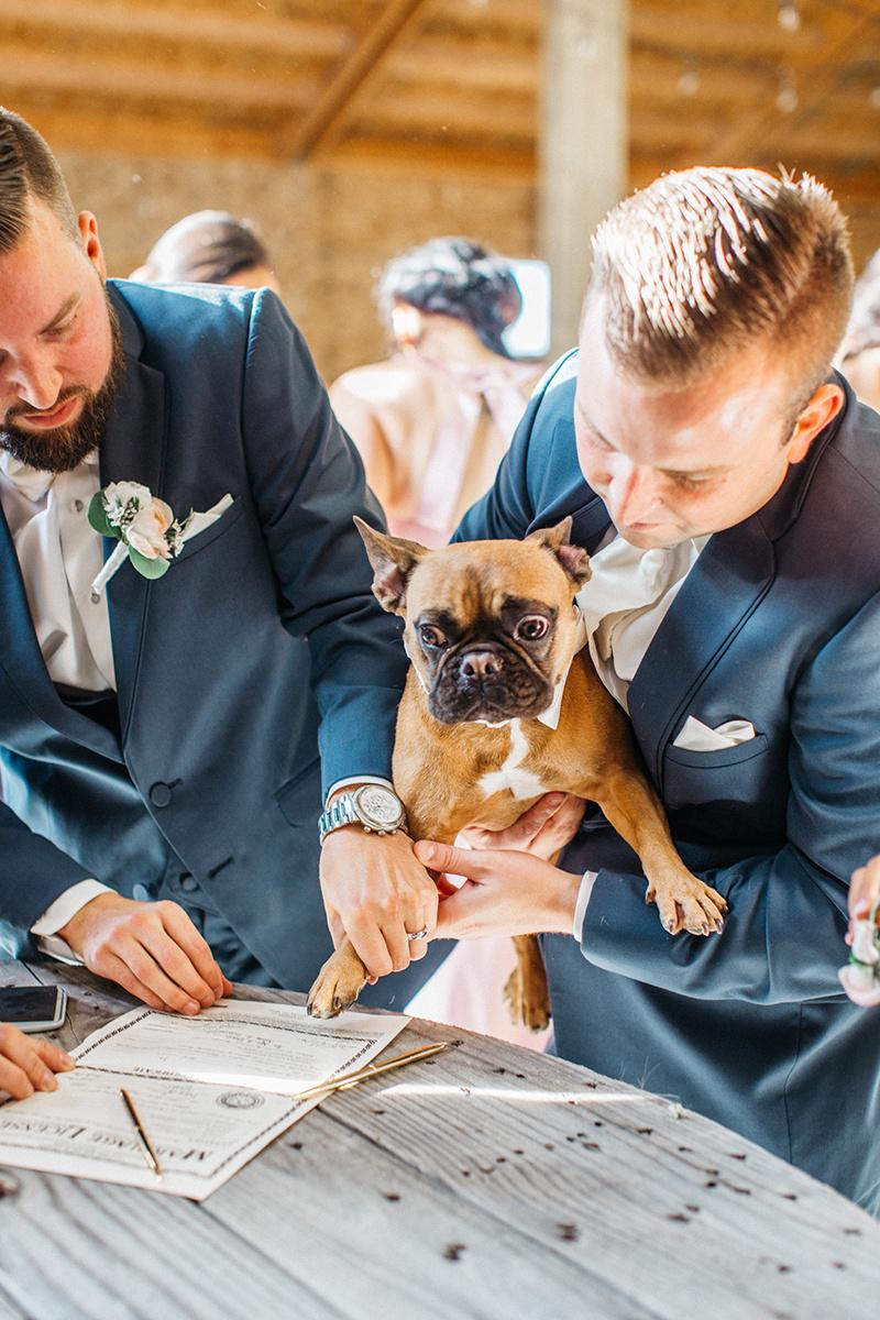 TIA-AUSTIN-BARN-WEDDING-DENVER-COLOARDO-WEDDING-PHOTOS-2.jpg