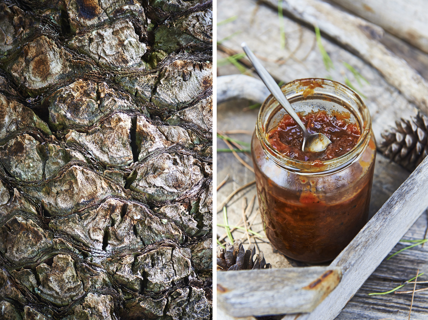 Corne's chutney  silver island photography photographer food photographer london britain uk recipe cookbook cook book ingredients travel greece sunshine bright vibrant delicious tasty method trees rustic daylight spoon tree detail jam jar spoon onion tomato pine tray close up