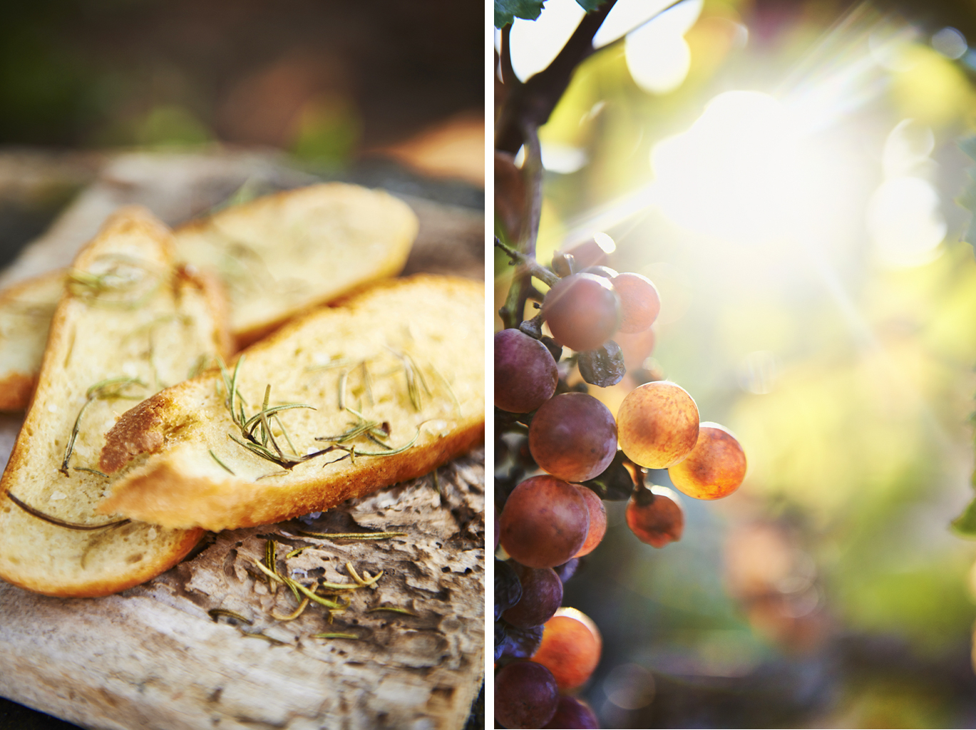 Crostini and grapes in the island's vineyard.