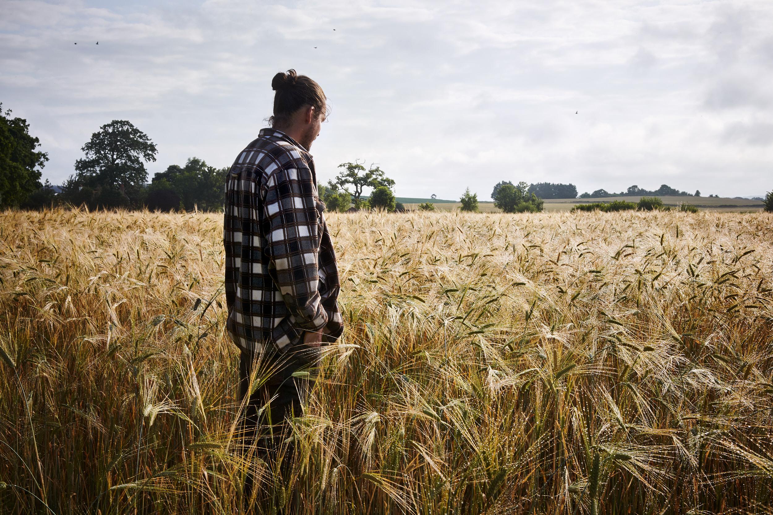 Personal Work: Regenerative Agriculture.