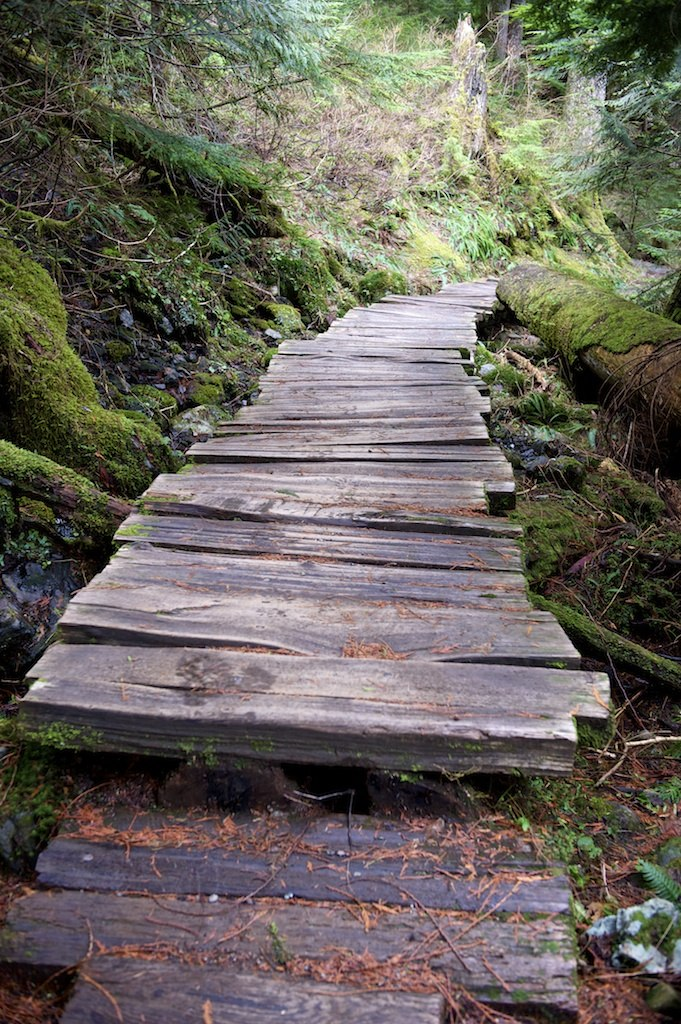 Came to an interesting boardwalk, the boards were really jagged and fun to walk over.