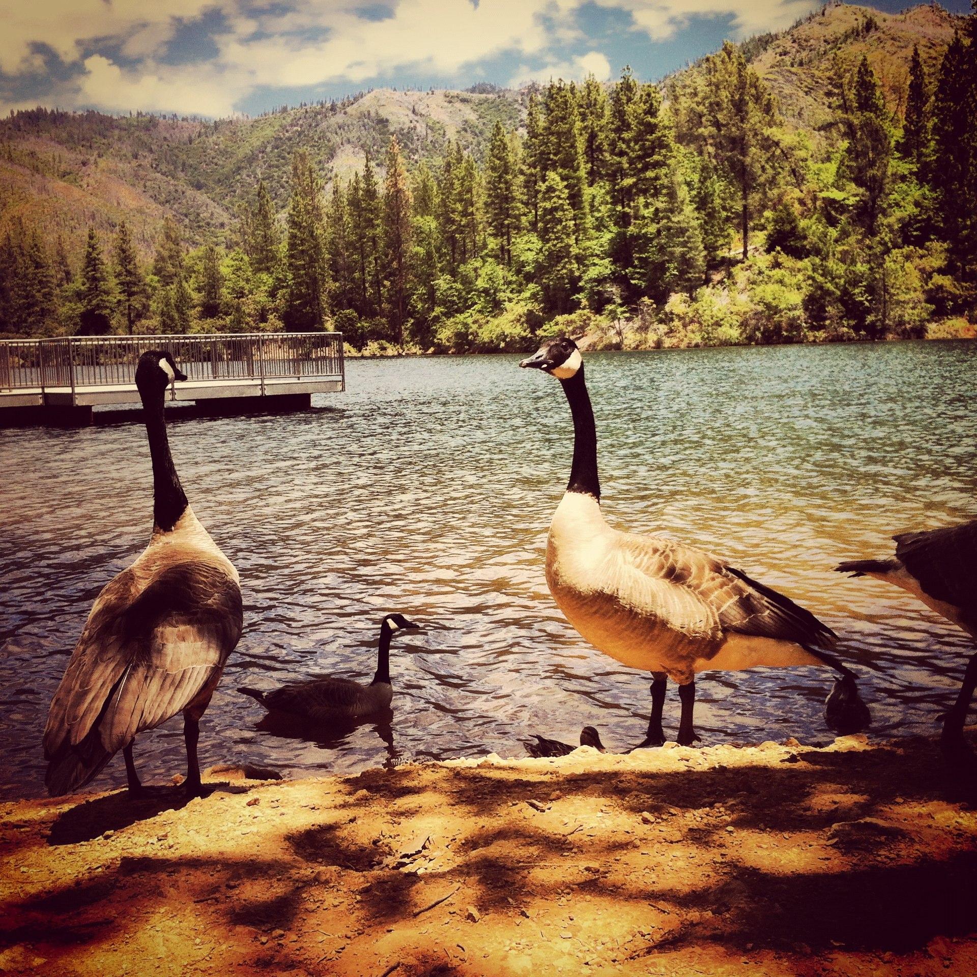 Whiskeytown Lake, Redding CA