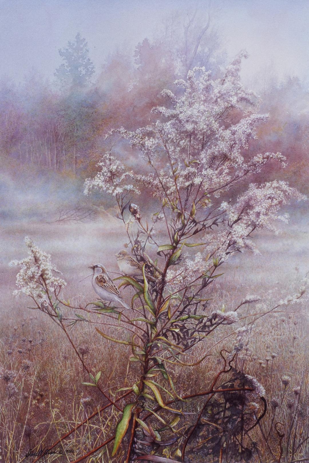Meadow Susurrus
