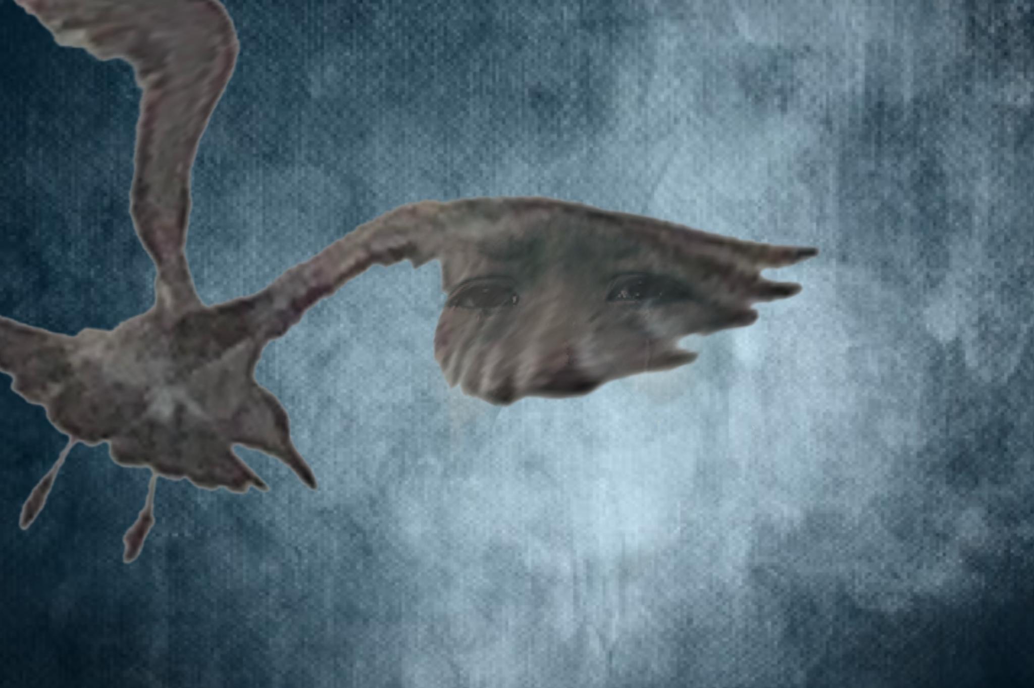 Looming - SuperimposeX