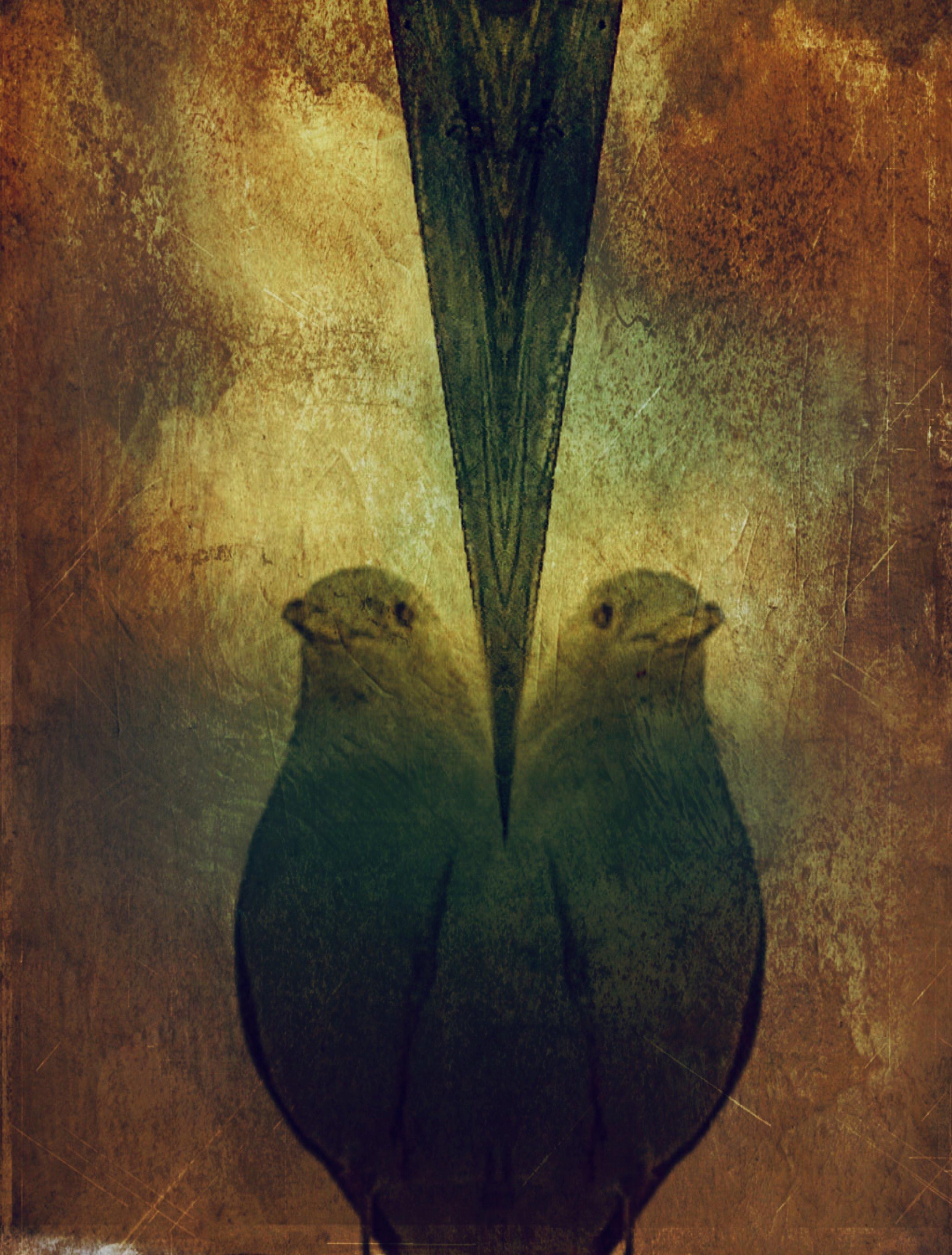 Asunder - Oblique, Superimpose X, iColorama