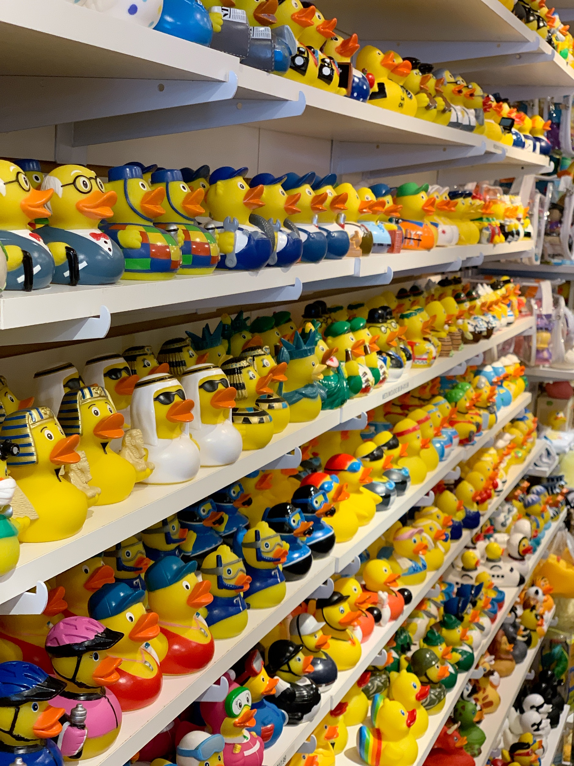 Time to get my ducks in a row -