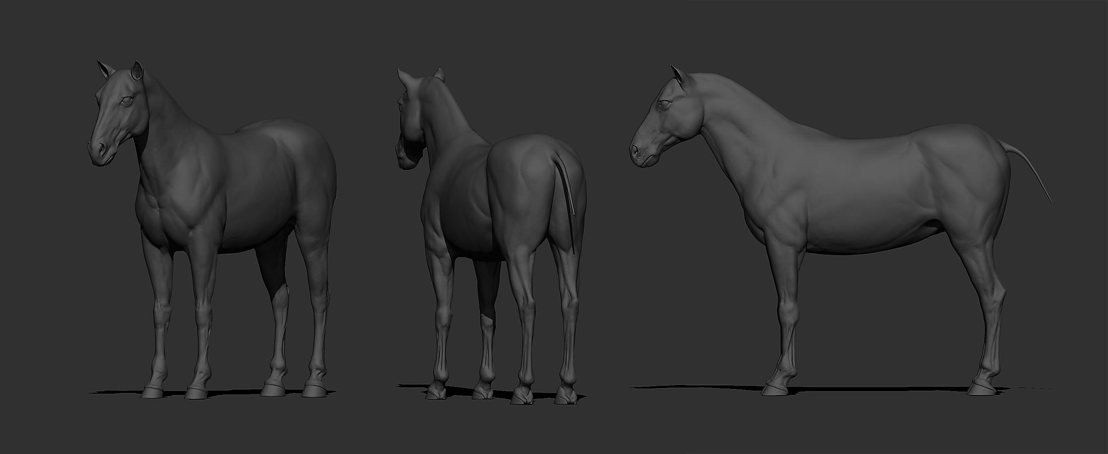 horse_mudbox (1).jpg