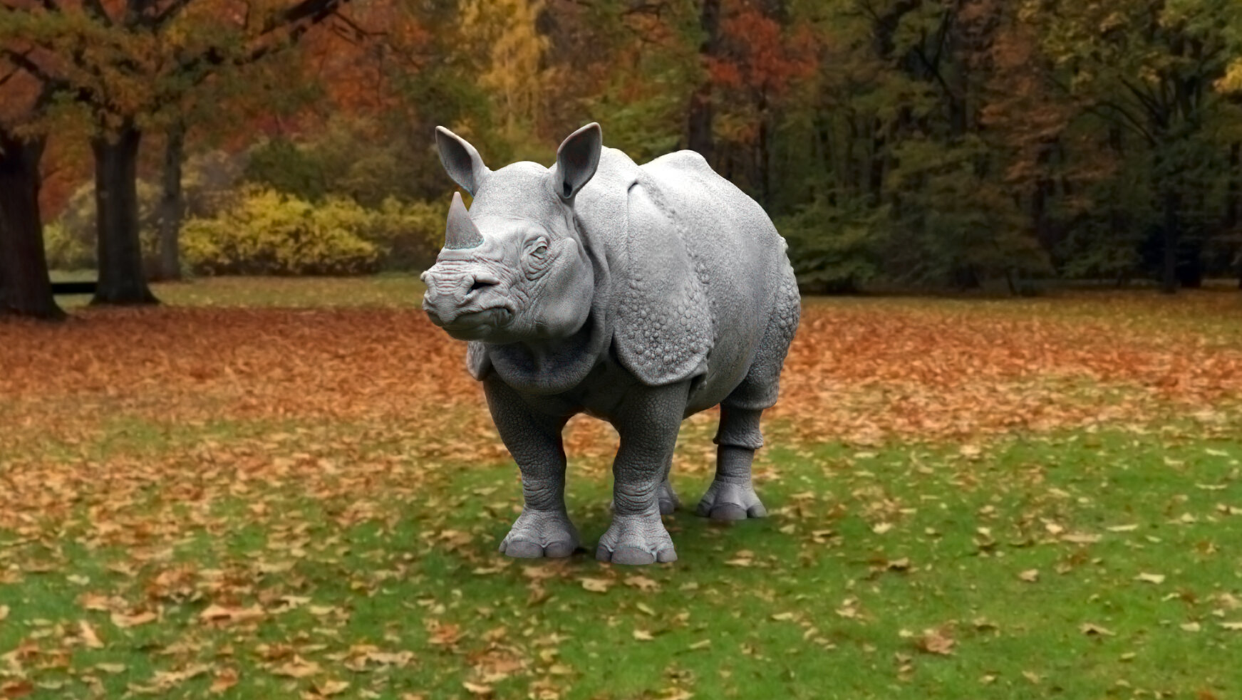 asian rhino.jpg