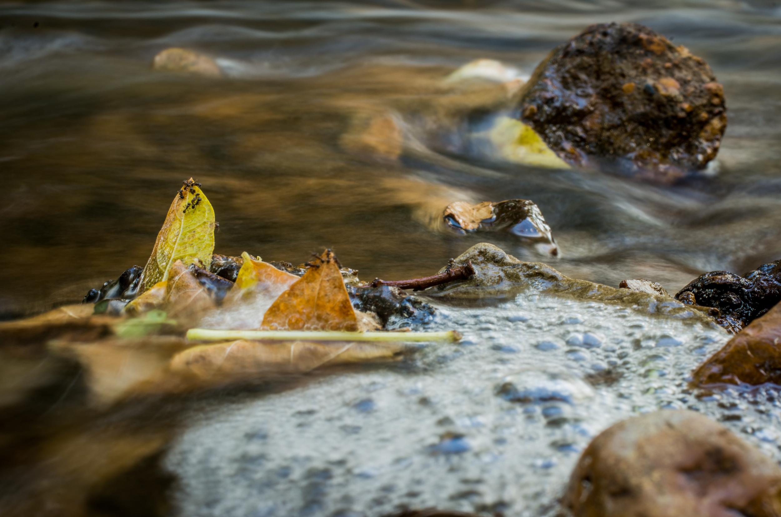 20140831-Heman Park Water-PMG_6191.jpg