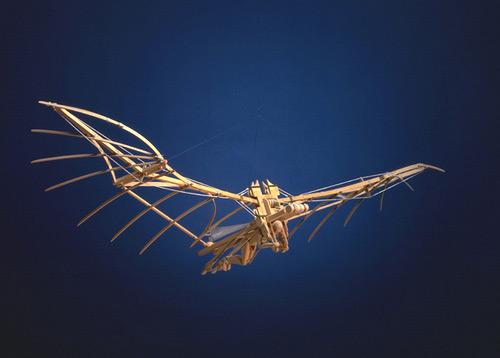 Da Vinci Flying Machine.jpg