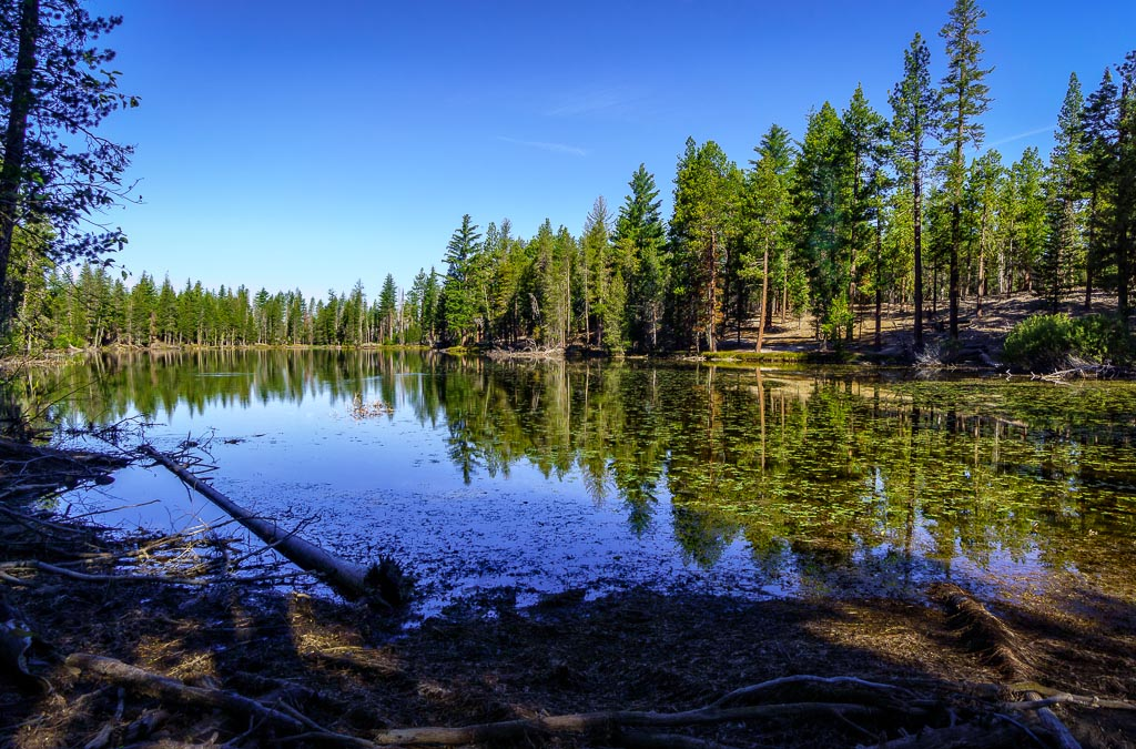 Reflection Lake, Lassen Volcanic National California