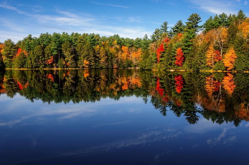 Fall Tranquility