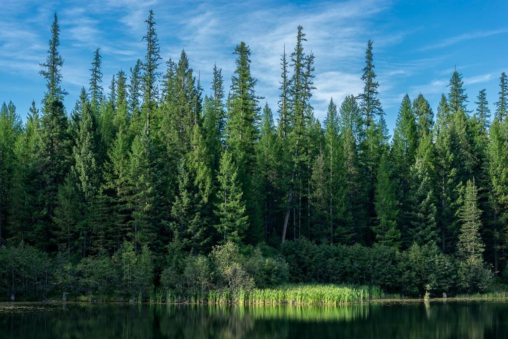 Lion Lake, Flathead National Forest, Montana