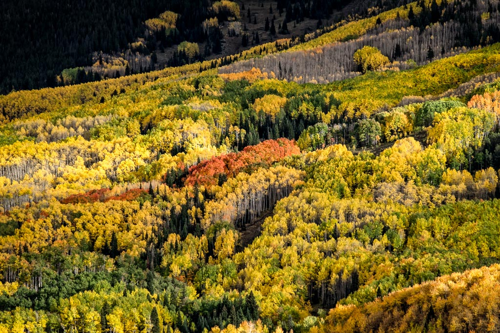 Capitol Creek Road, White River National Forest, Colorado