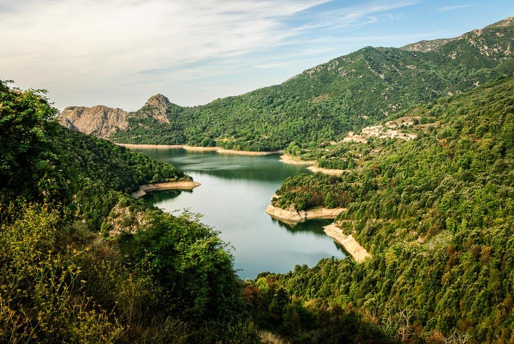 Corsican Beauty