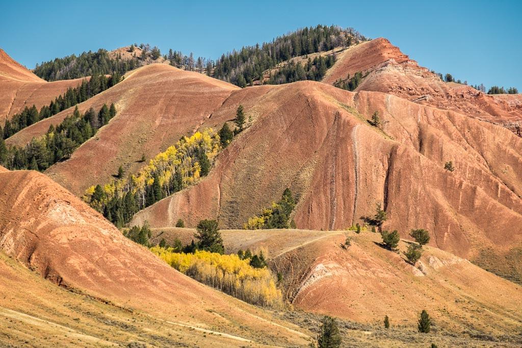 Red Hills Close Up