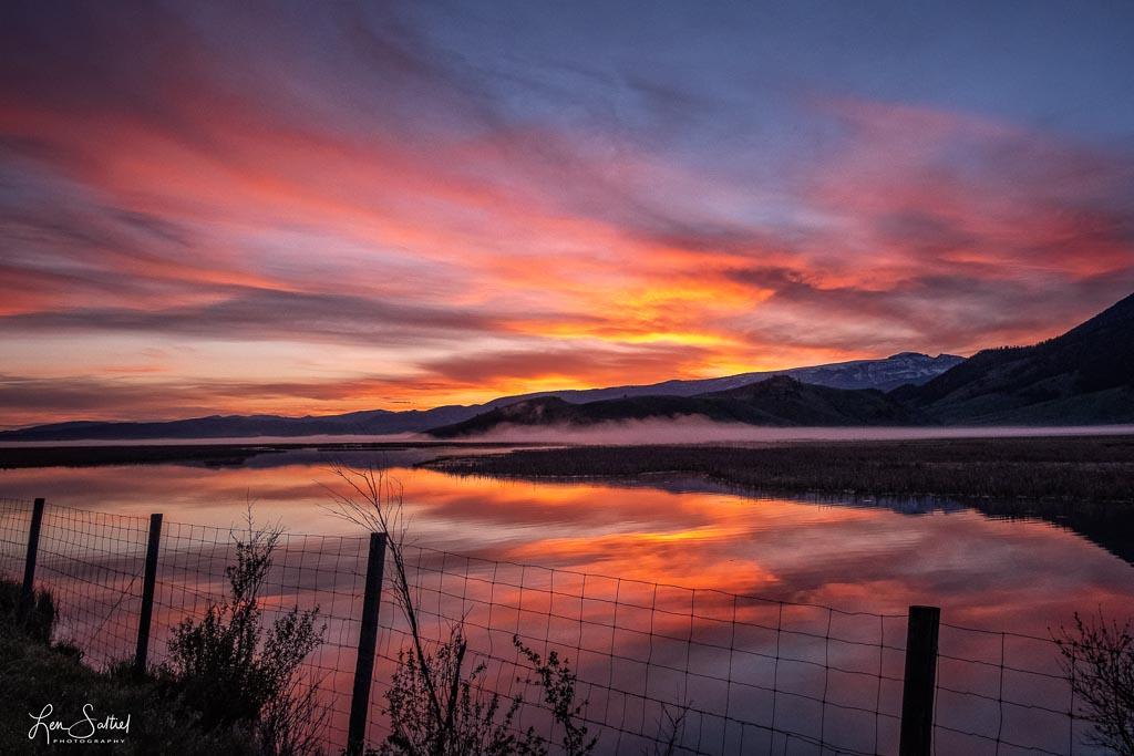 National Elk Reserve Sunrise