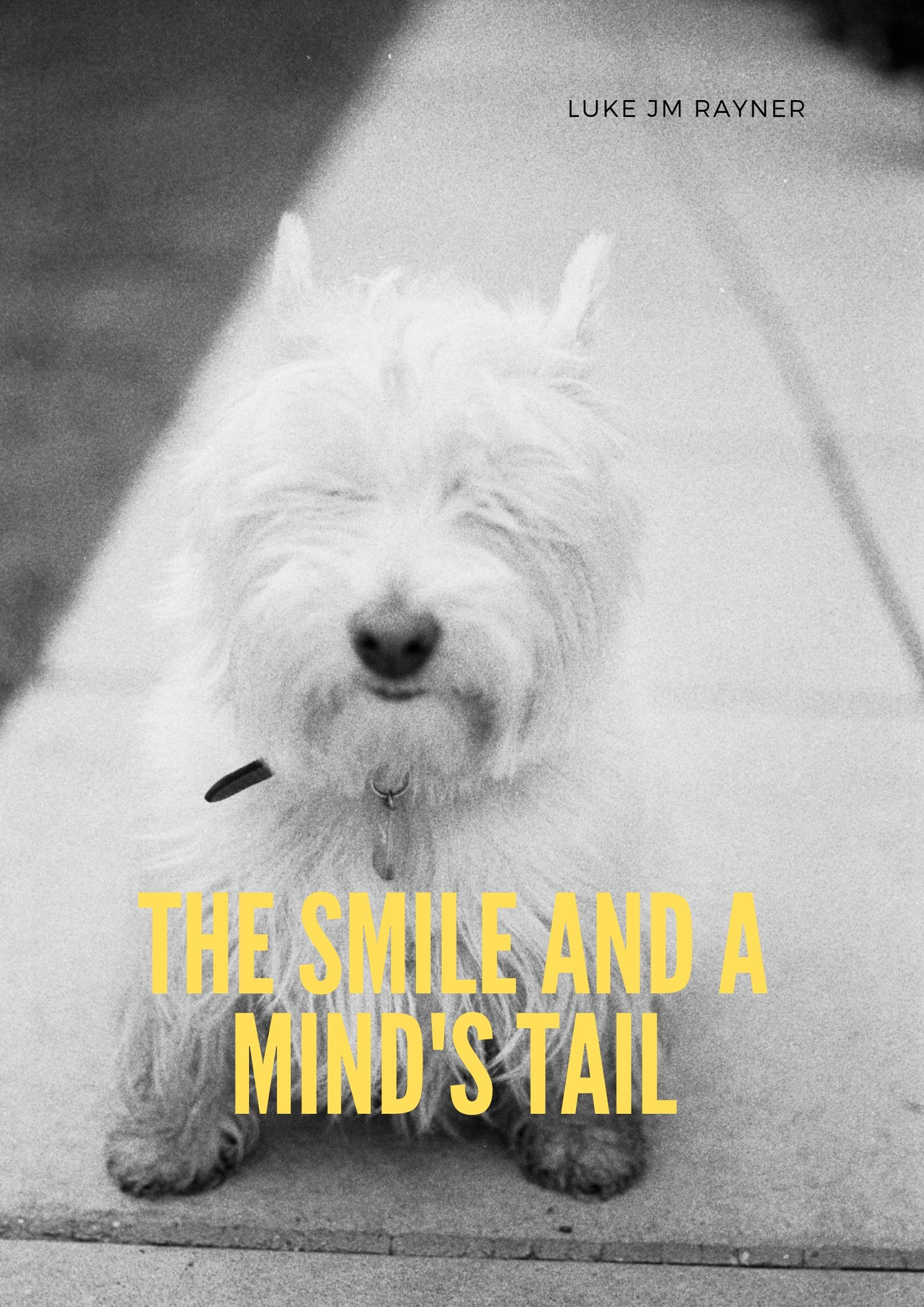 A Smile and Mind's Tail.jpg
