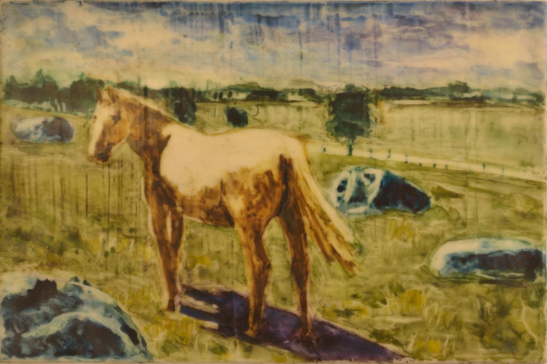 Horse Circle 1