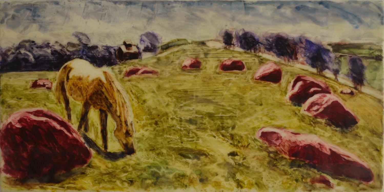 Horse Circle 4