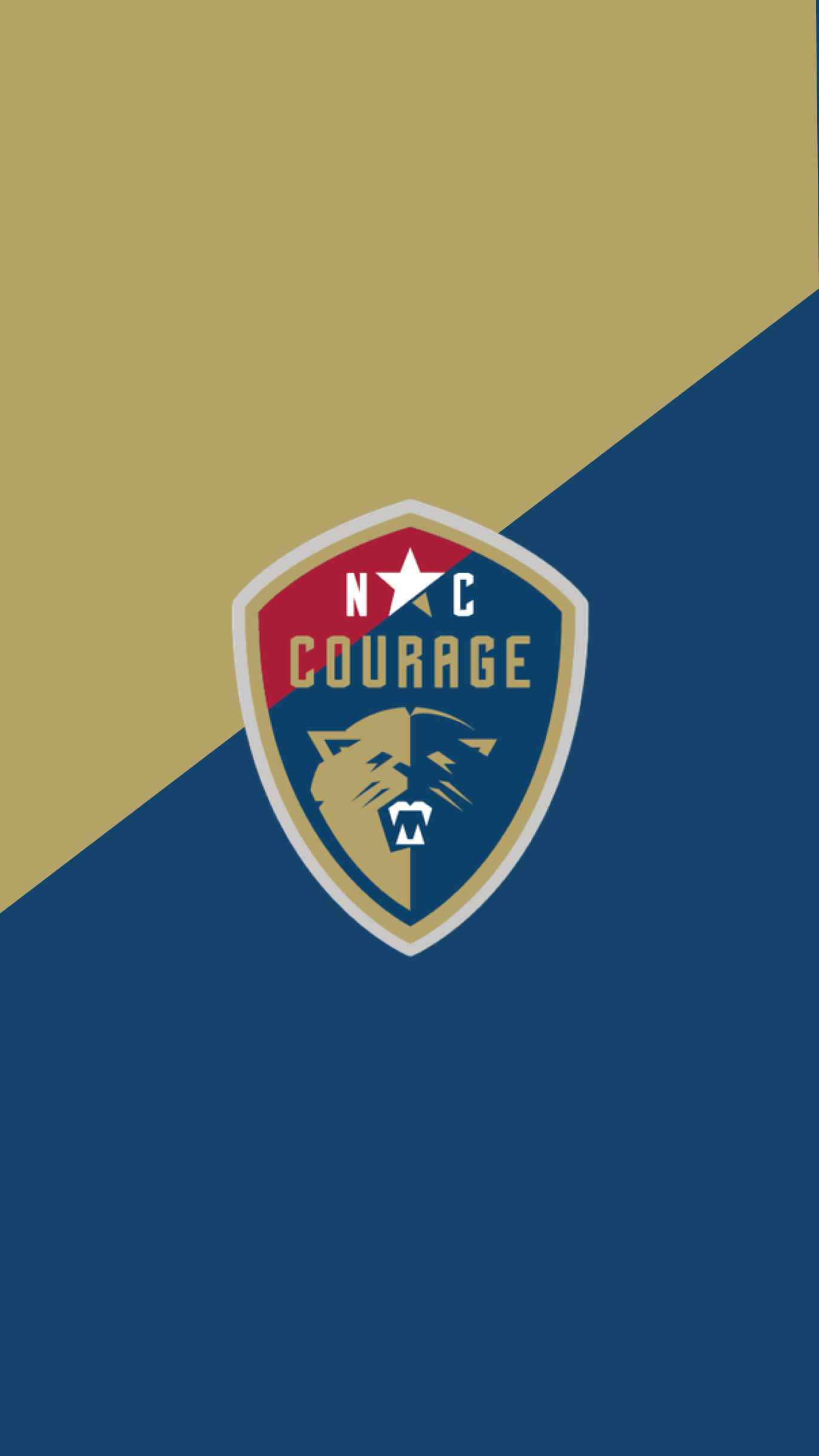 NIKE-NWSL-IG-STORY-09.png